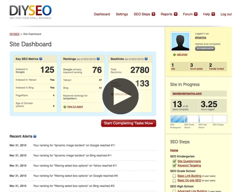 » Do It Yourself SEO Finding Affordable Search Engine Optimization for Small Business Websites
